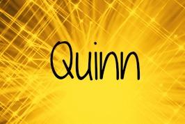quinn-about