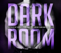 Release Blitz: Dark Room by Heidi  McLaughlin & L.P. Dover