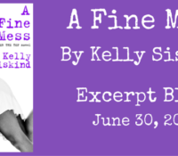 Excerpt Reveal: A Fine Mess by Kelly Siskind