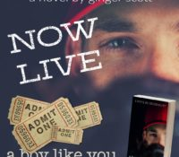 Release Blitz: A Boy Like You by Ginger Scott