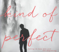 Review: Some Kind of Perfect by Krista & Becca Ritchie